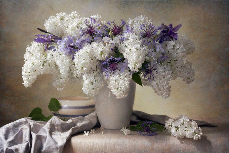 Jolanta Brigere Lilac Bouquet Beautiful Bouquet Of Flowers Still Life Flowers