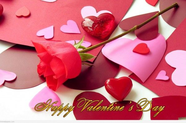 HQ Wallpapers Plus provides different size of Valentines Day Roses Hd Wallpapers. You can easily download high quality wallpapers in widescreen for your desktop.
