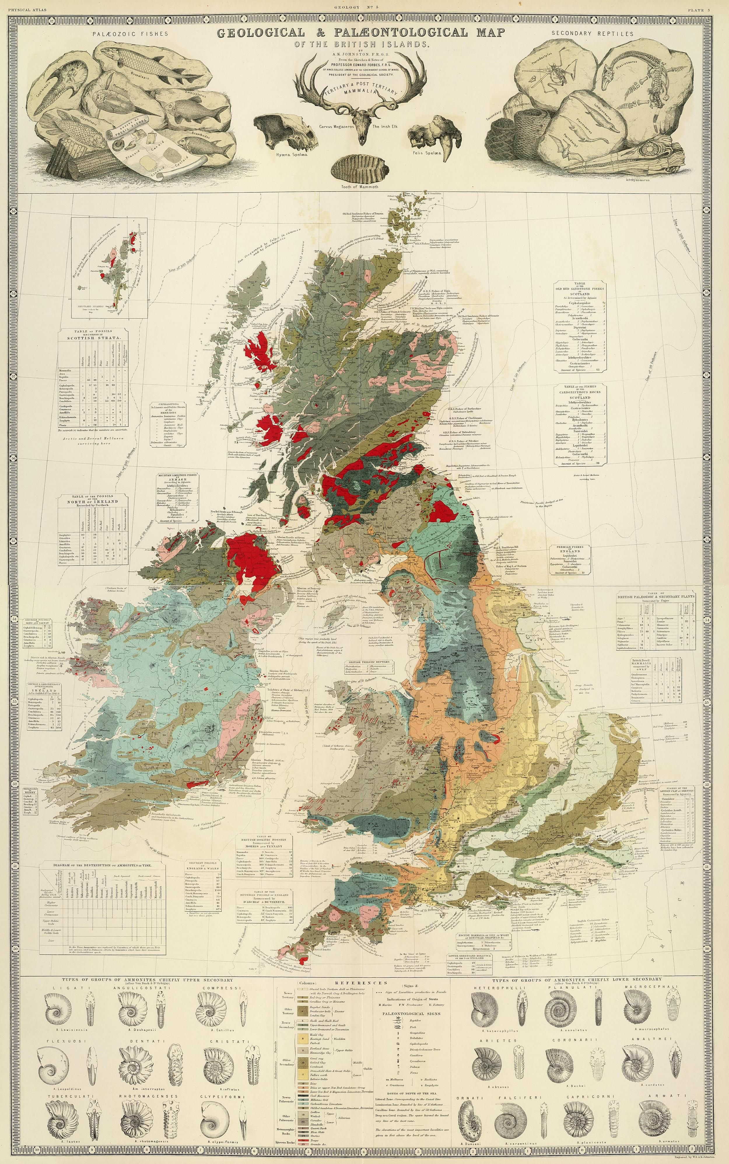 Geological and palaeontological map of the british islands 1854 geological and palaeontological map of the british islands 1854 gumiabroncs Gallery