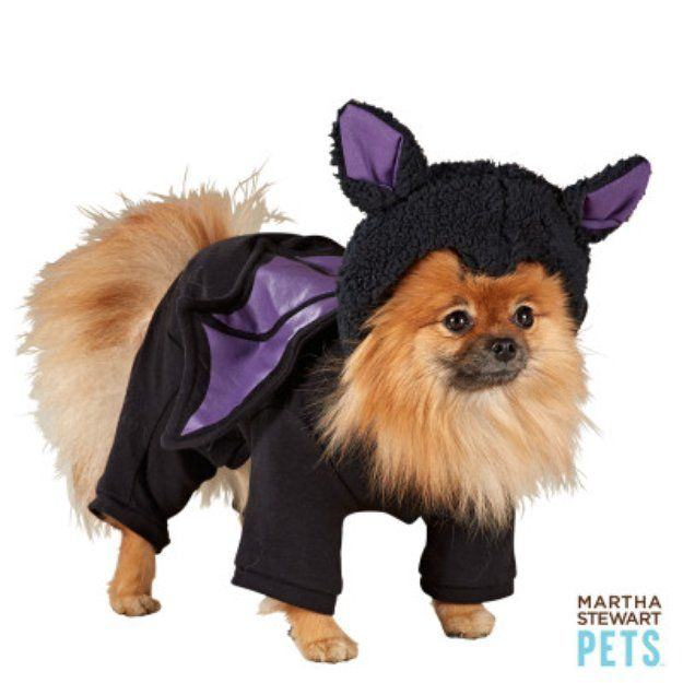 Martha Stewart Petsa 3d Bat Costume Pajamas Large Dog Costumes