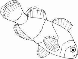 clown fish drawing - Google Search
