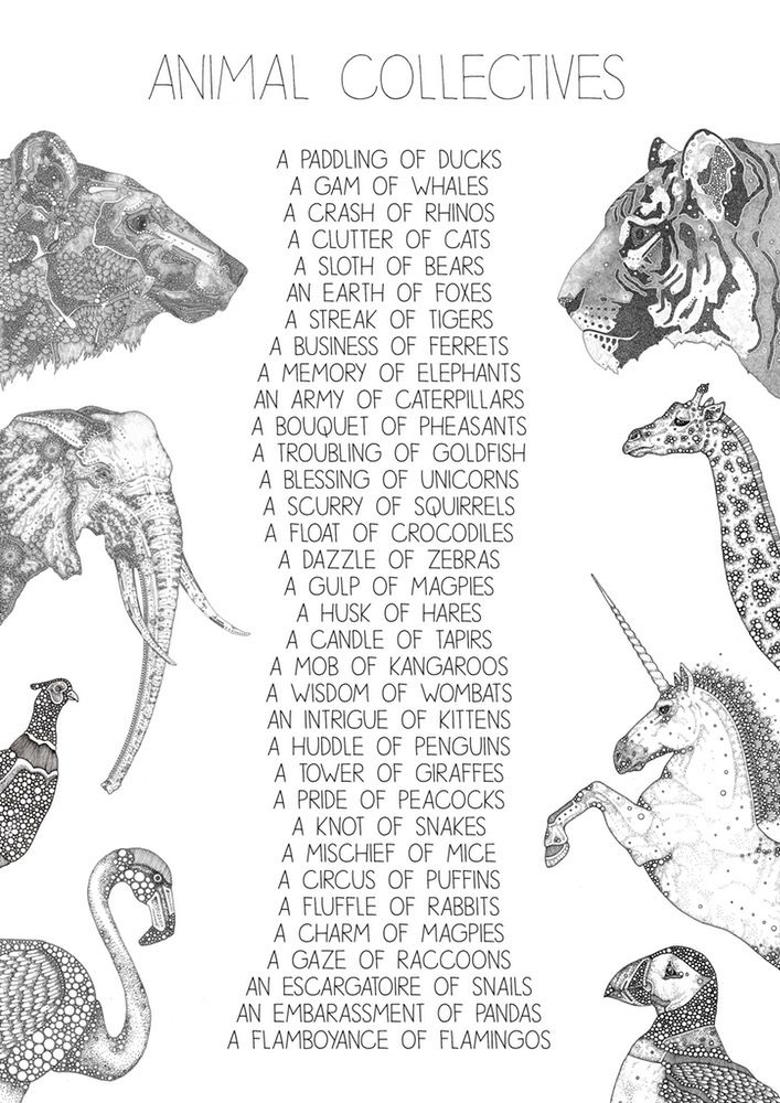Image of Little Dot's Animal Collectives Animal