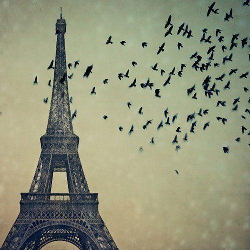 Torre Eiffel Tumblr
