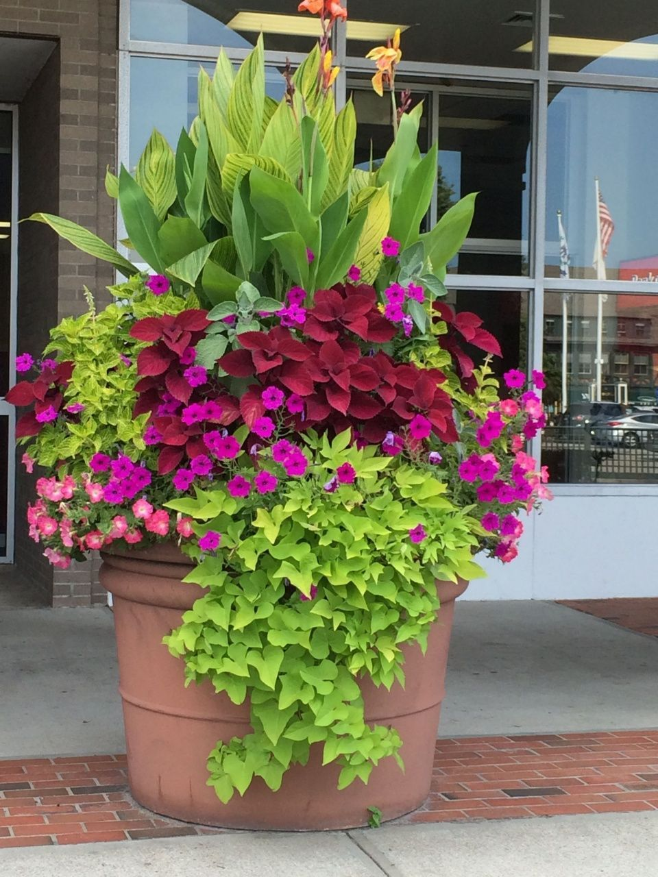Patio Plants In Pots Ideas This Is A Really Big Pot But This Could Be Done On A Big Conta Flower Pots Outdoor Container Gardening Flowers Container Flowers