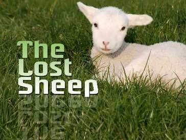 Sermon Powerpoint Illustration on Parable: Lost Sheep