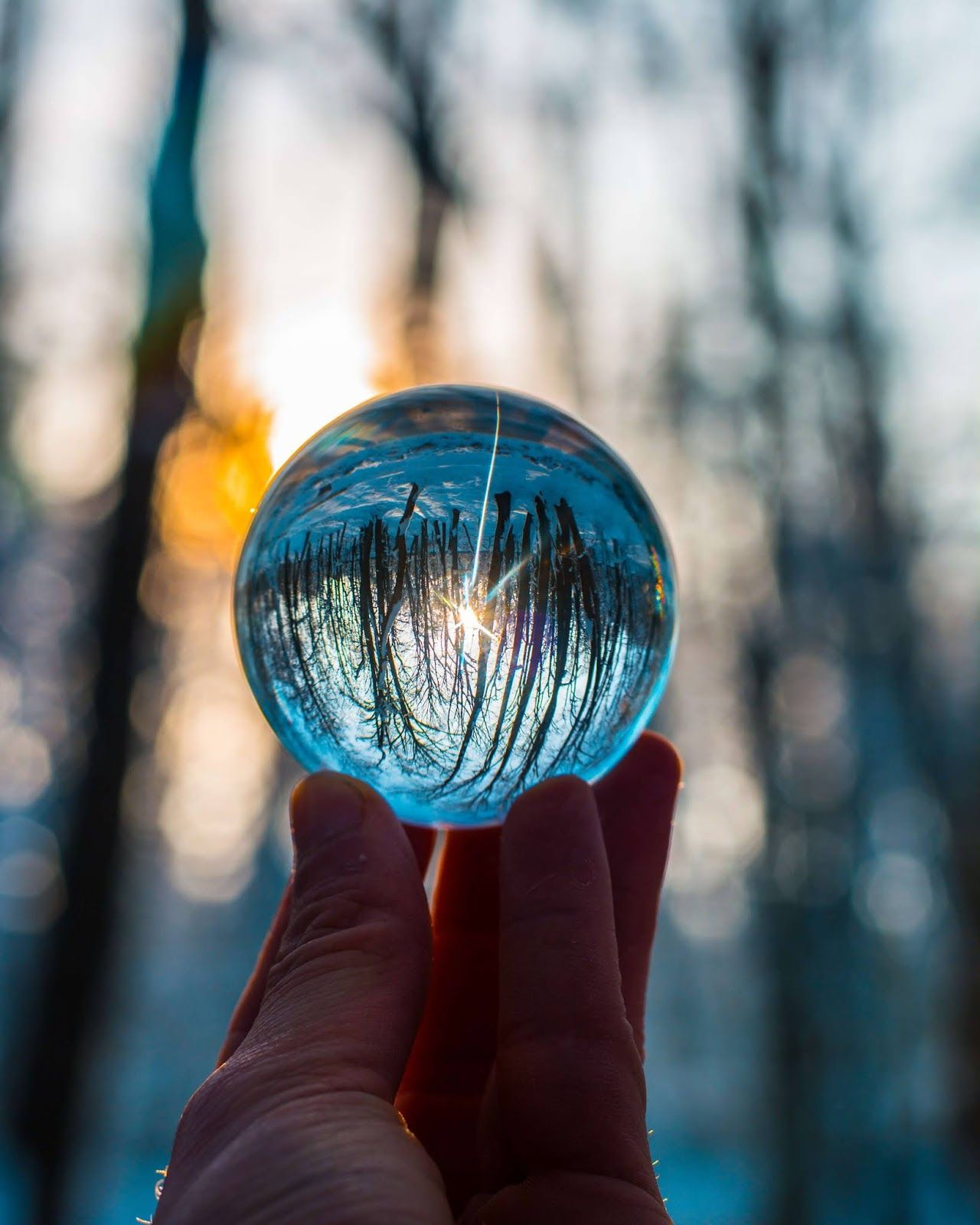 Lensball Photography Instagram in 2020 (With images) Hd