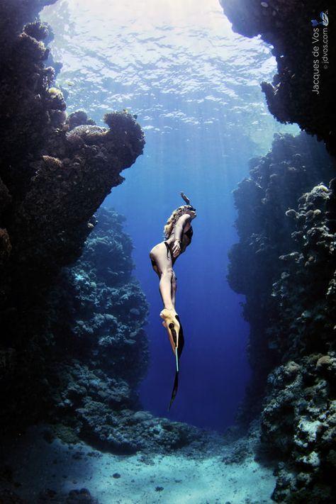 Épinglé par cgo sur w.under water | Under the water