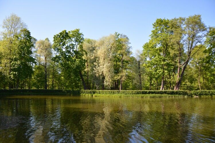 Park at Peterhof