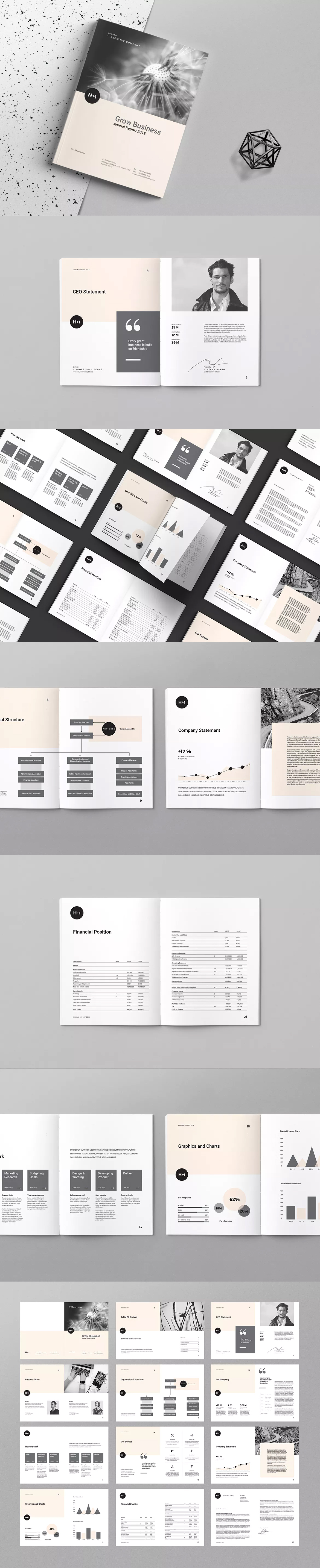 Annual Report Template InDesign INDD - US Letter and A4 Size ...