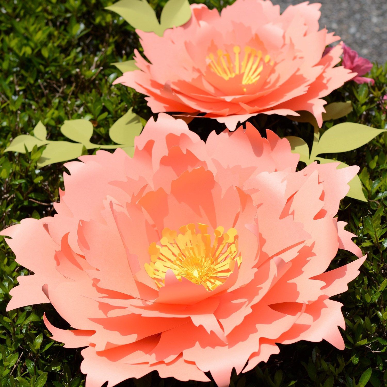 Seattlegiantflowers Shared A New Photo On Free Tutorial