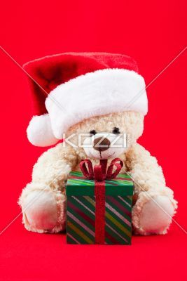 teddy bear christmas - Shot of a teddy wearing a Santa hat on a red background sitting in front of a green gift.
