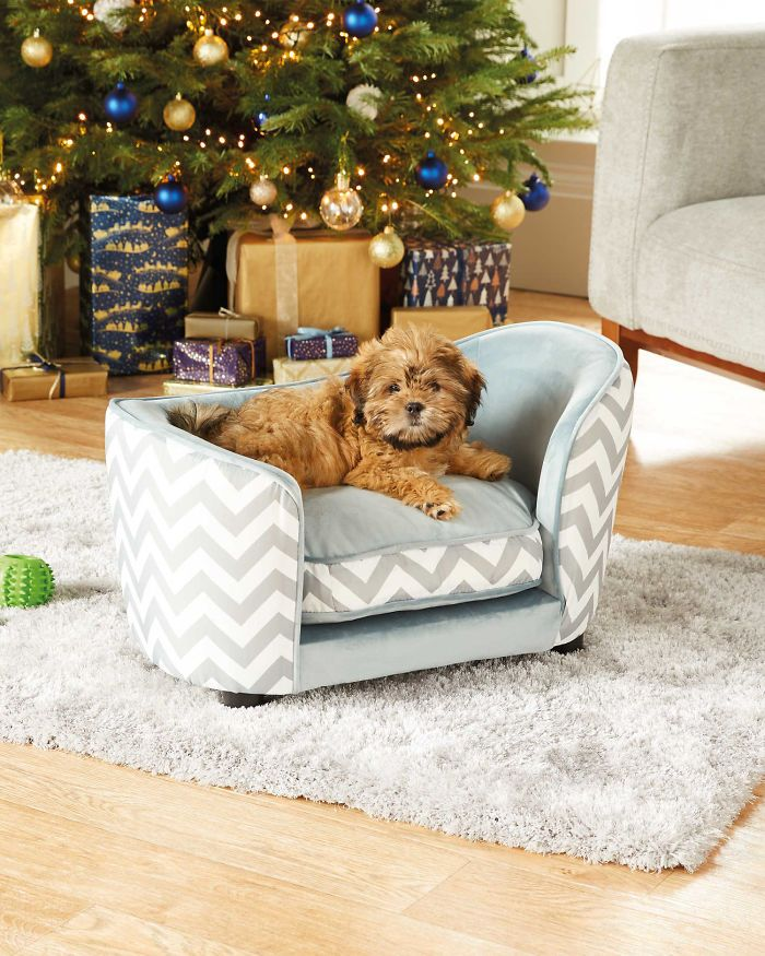 Aldi Released A Line Of Adorable Tiny Sofas For Dogs in
