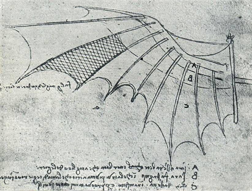 DaVinci Gleitsegel | the tempest | Pinterest | Fliegen, Leonardo da ...