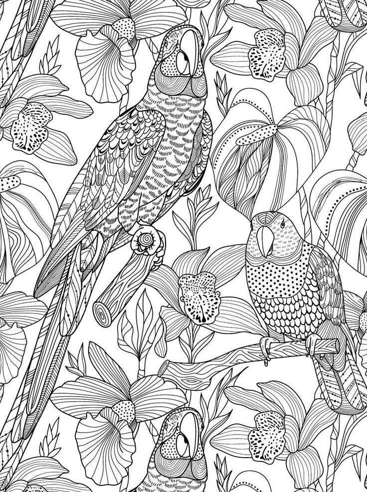 комплексов здоровый арт-раскраска мир животных качестве финишного
