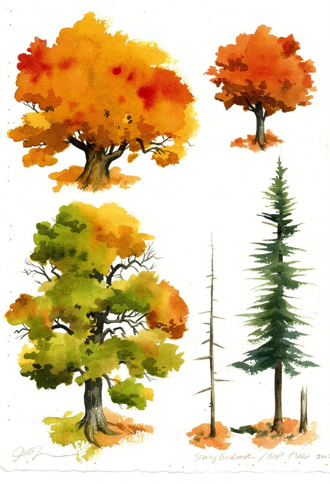 Happy Birthday To Me Nov 20 At 12 30 Am Watercolor Trees Tree