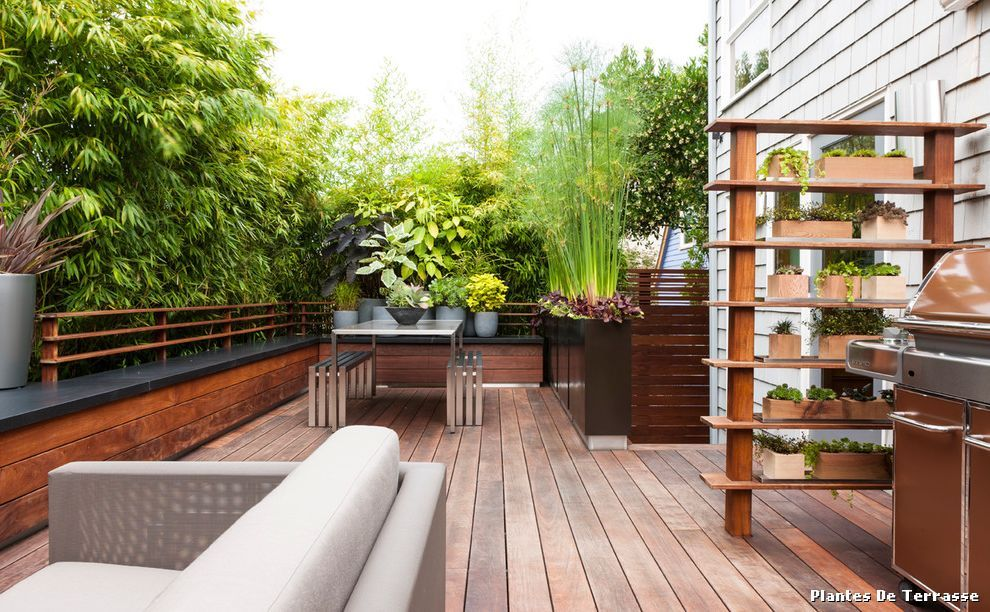 plantes-de-terrasse-with-contemporain-terrasse-en-bois-et-balconjpg - cout d une terrasse en bois