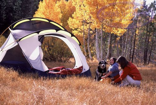 Make your first couple of camping trips carefree and simple and you'll discover how to love it. You may even discover yourself starting new household traditions that consist of the terrific adventures of outdoor camping!