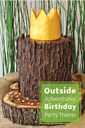 Release Your Little Guys Inner Woodsman With This Nature Themed Birthday Party Idea A DIY Tree Stump Cake Complete Chocolate Bark Frosting