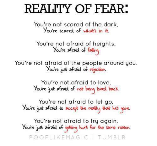 Beauty of Fear