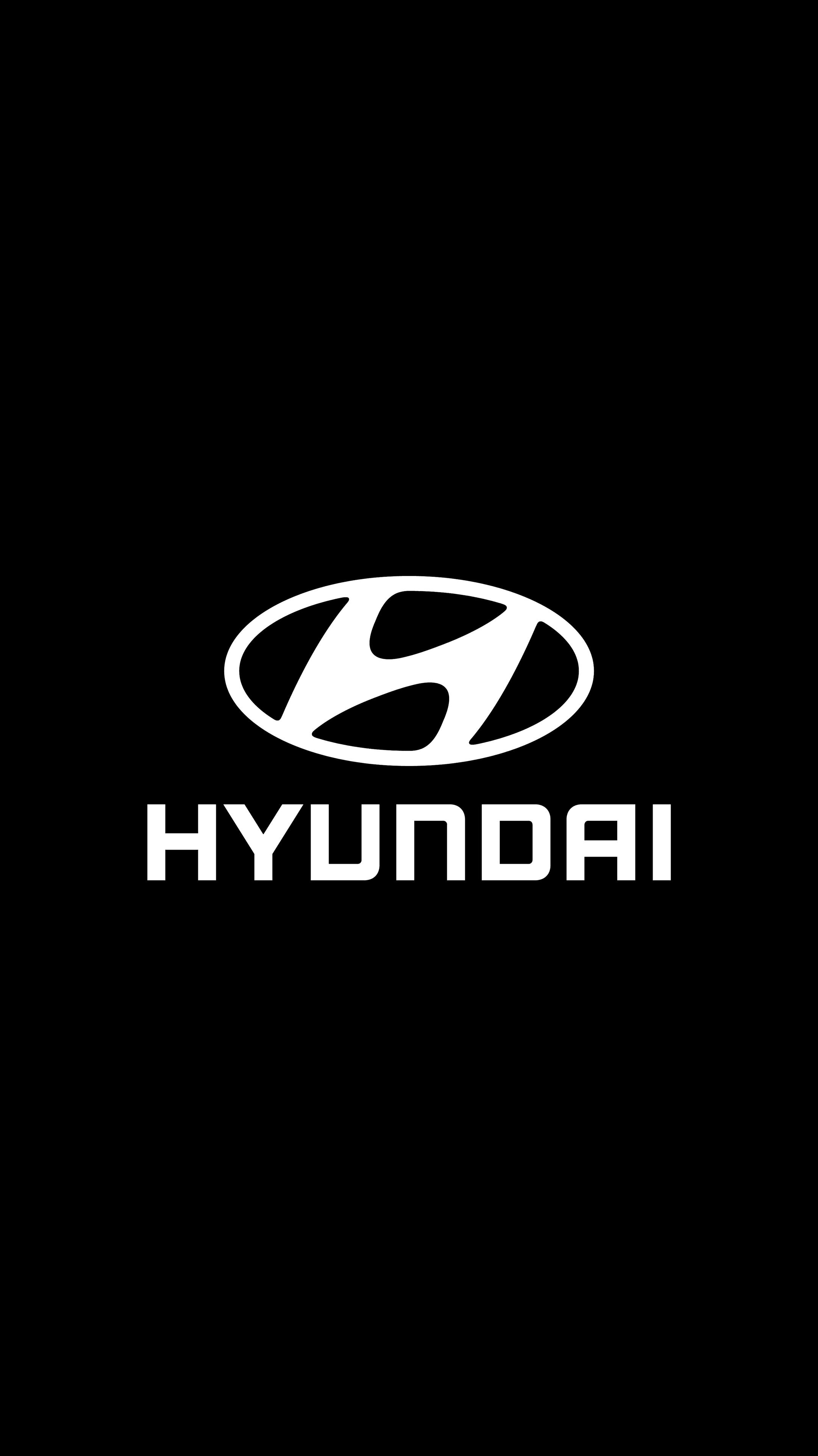 Pin By Andries Van On Gemotoriseerde Fiets Hyundai Logo Graphic Design Ads Car Logos