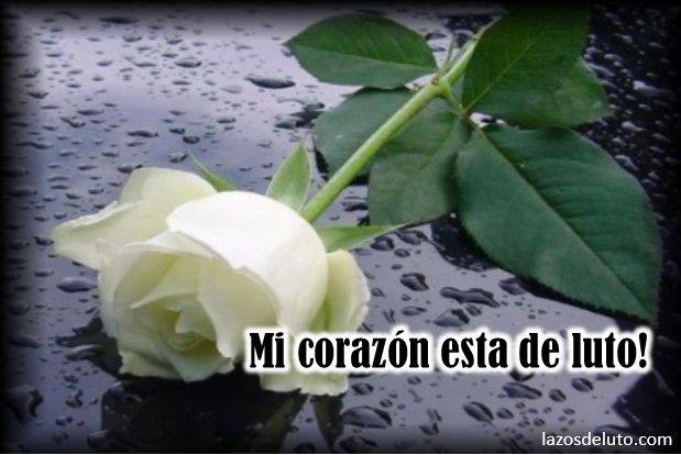 Mensajes De Luto Cristianos: Imagenes De Luto Con Rosas Blancas
