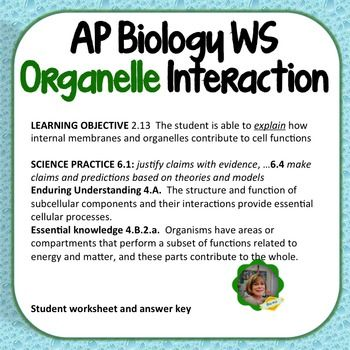 AP Biology Worksheet: Learning Objective 2.13, Organelle ...