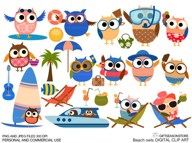 Beach owls Digital clip art for Personal and Commercial use - INSTANT DOWNLOAD