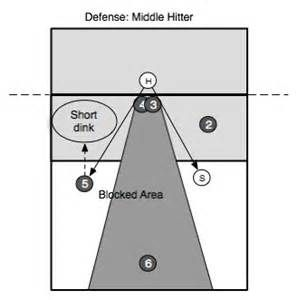 Volleyball Perimeter Defense Bing Images