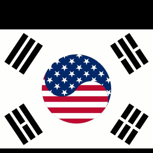 Korea S Flag America S Flag Possible Future Tattoo 문화 베트남