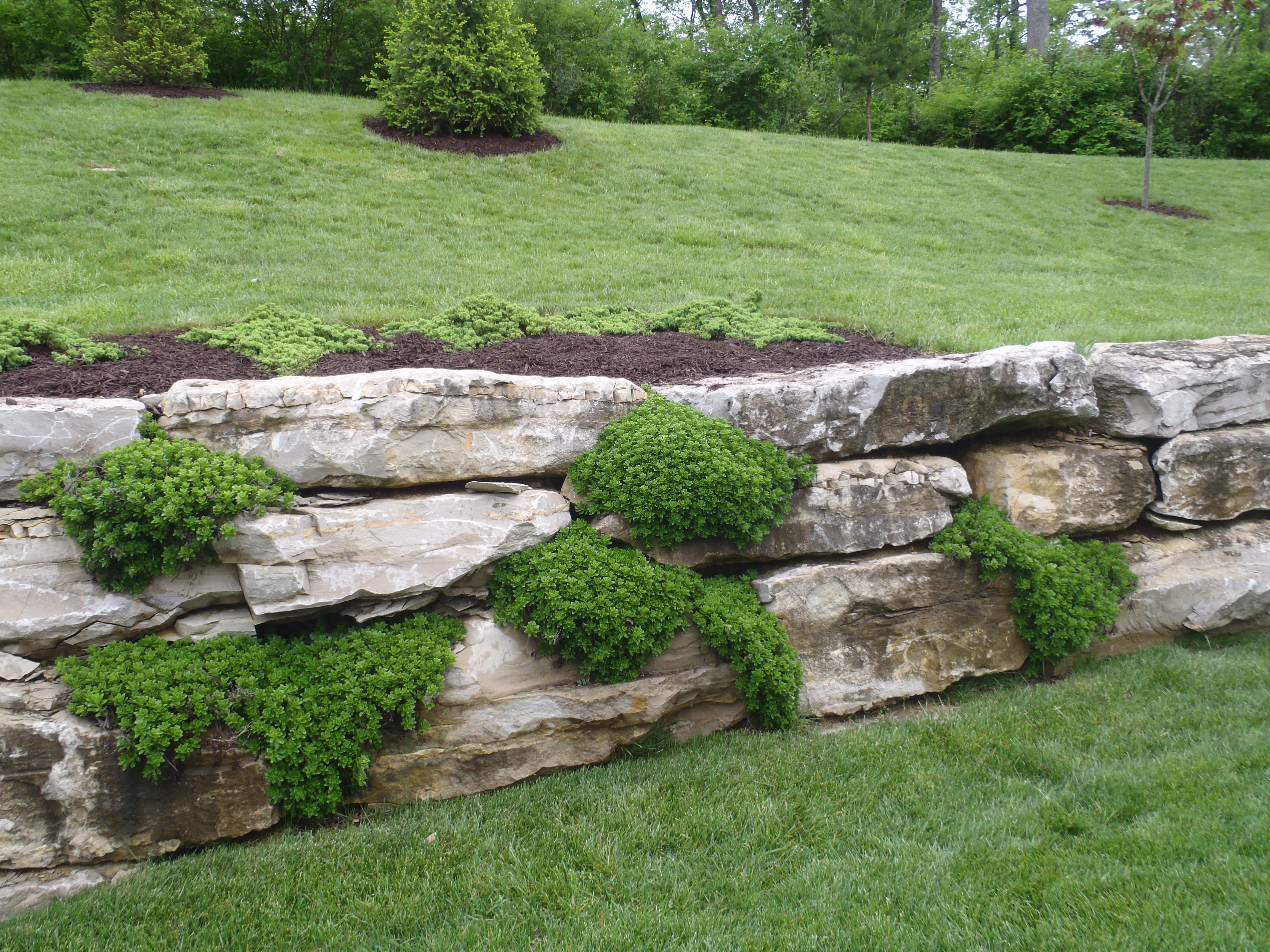 Boulder Meets Timber Retaining Wall Google Search 640 x 480