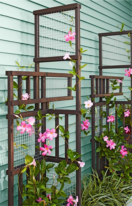 Build A Trellis As An Outdoor Architectural Element That