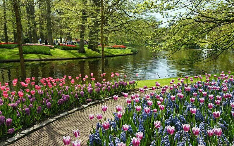 Claremont Park Most Beautiful Gardens Beautiful Gardens Flower Garden Wallpaper images wallpaper garden photos