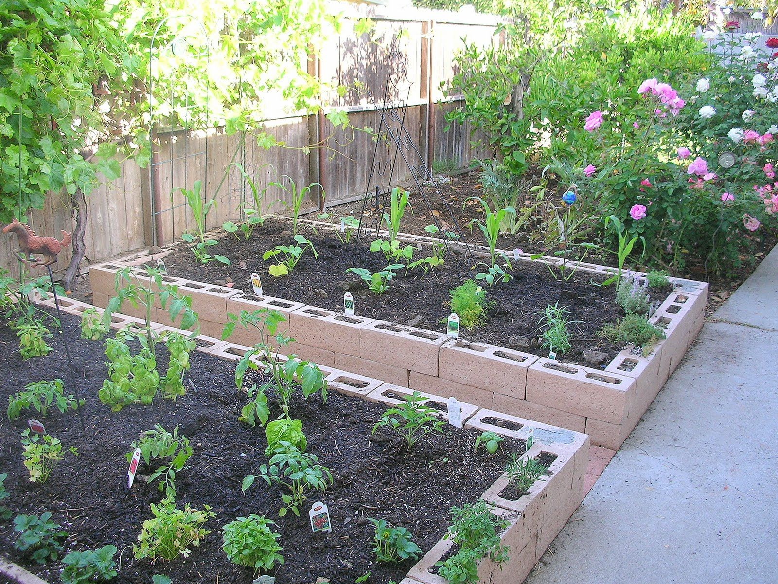 Into The Kitchen Potager Cinder Block Garden Garden Beds Backyard Landscaping