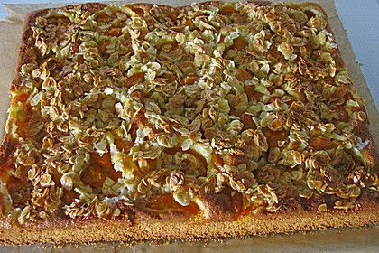 Schneller Blechkuchen Rezept schneller blechkuchen mit obst blechkuchen mit obst schneller