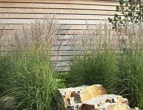 gräser und holzwand in einer gartengestaltung | jardin | pinterest, Garten und Bauen
