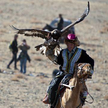 Take a horse trek through Mongolia (Golden Eagles of the Kazakhs)