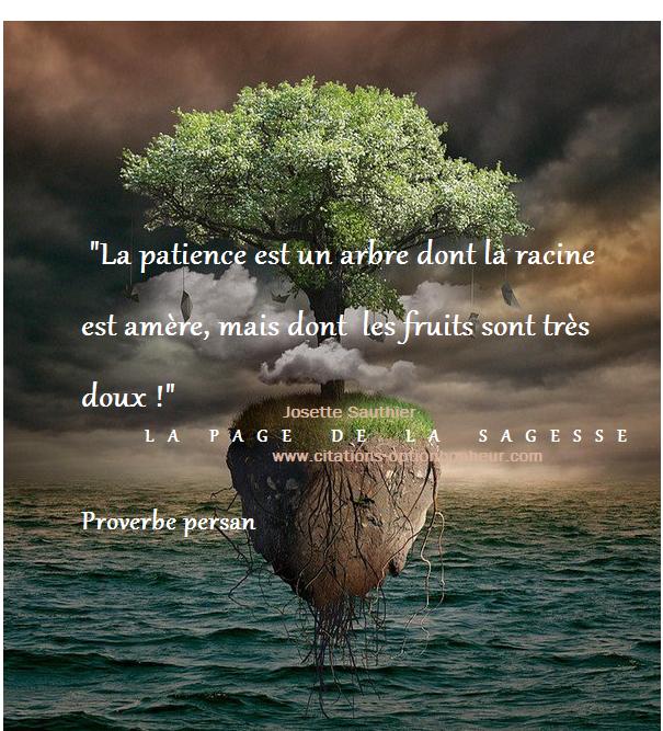 La Page De La Sagesse Citation Sur La Patience Patience