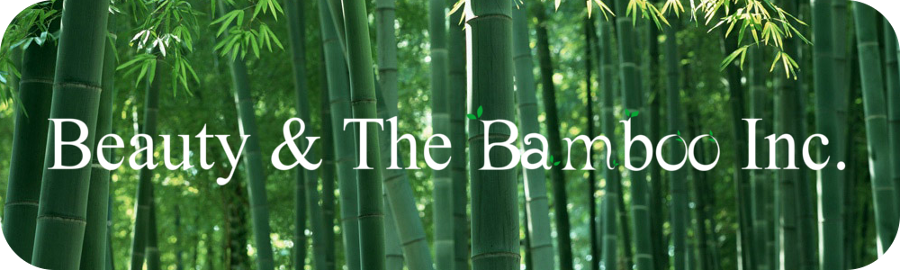 If You Re In Seattle Visit Beauty And The Bamboo Stan Bambooman Is Great Informative Helpful Friendly