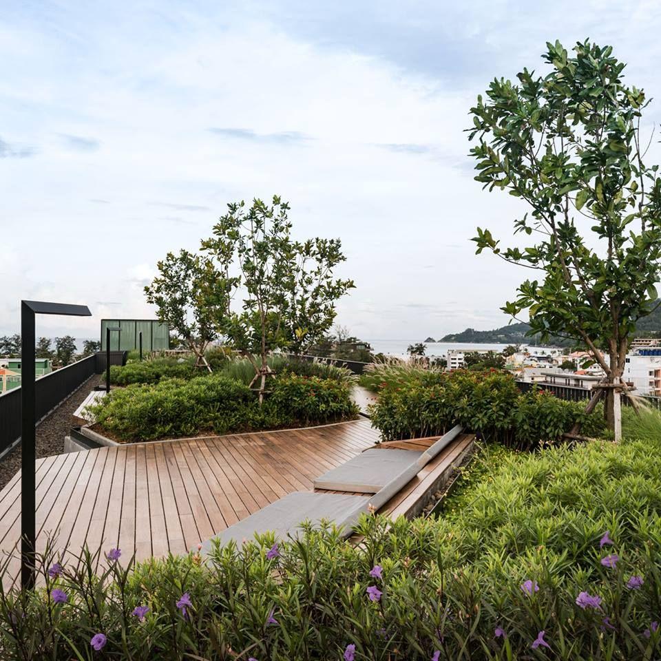 Landscape At The Deck Patong Landscape Design Roof Garden Design Rooftop Garden