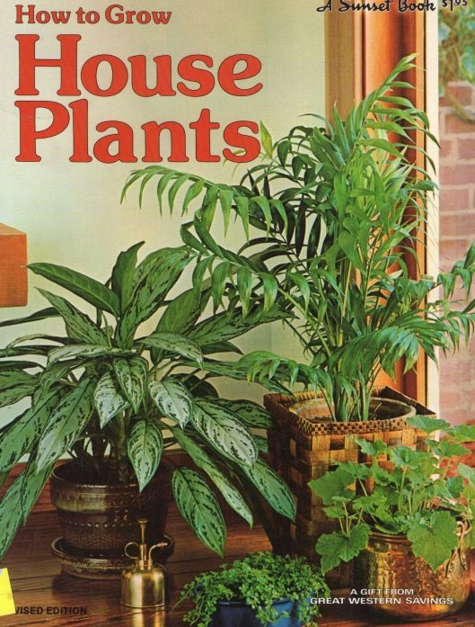 '70s houseplants...I think I just want more plants in my house