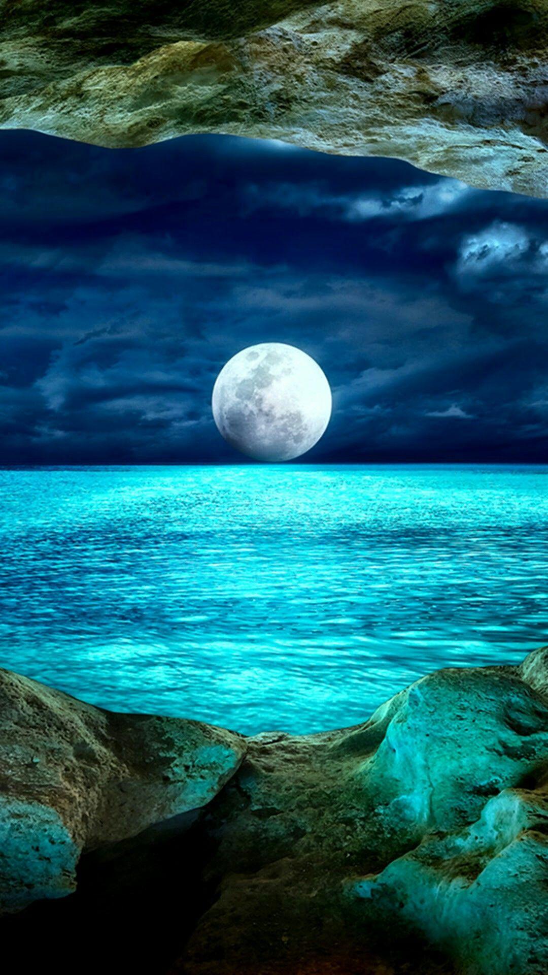 Rosies World Night Sea