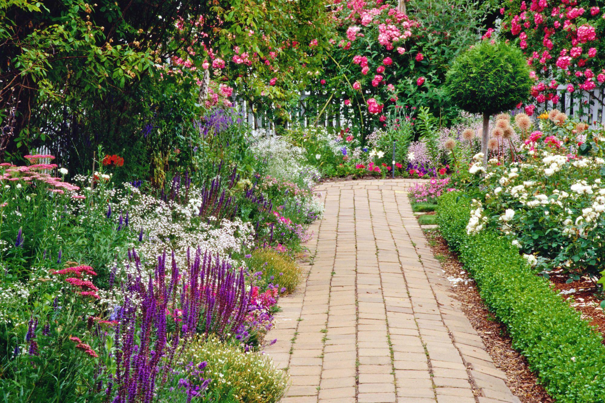 pin by debbie jones on my dream garden | cottage garden