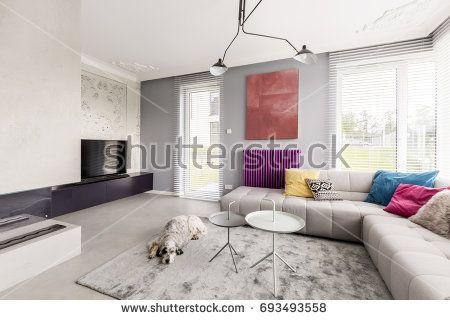 Dog sleeping in contemporary living room with big windows, corner