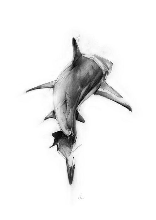 LessTalkMoreIllustration | Рисунок акулы, Татуировки обезьян