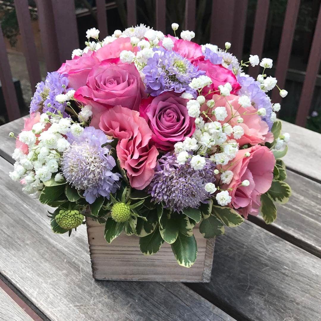 Цветы анжеле картинка, открытки днем