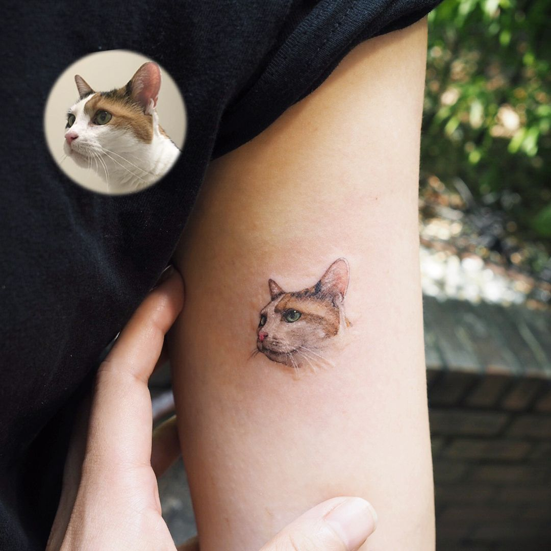 Please Visit Our Website Cat Cats Tattoo Chesire Cat Tattoo Simple Cat Tattoo Sphinx Cat Tattoo Colorful Cat Tattoo Tattoo Cat Cat Tattoo Ideas Cat T
