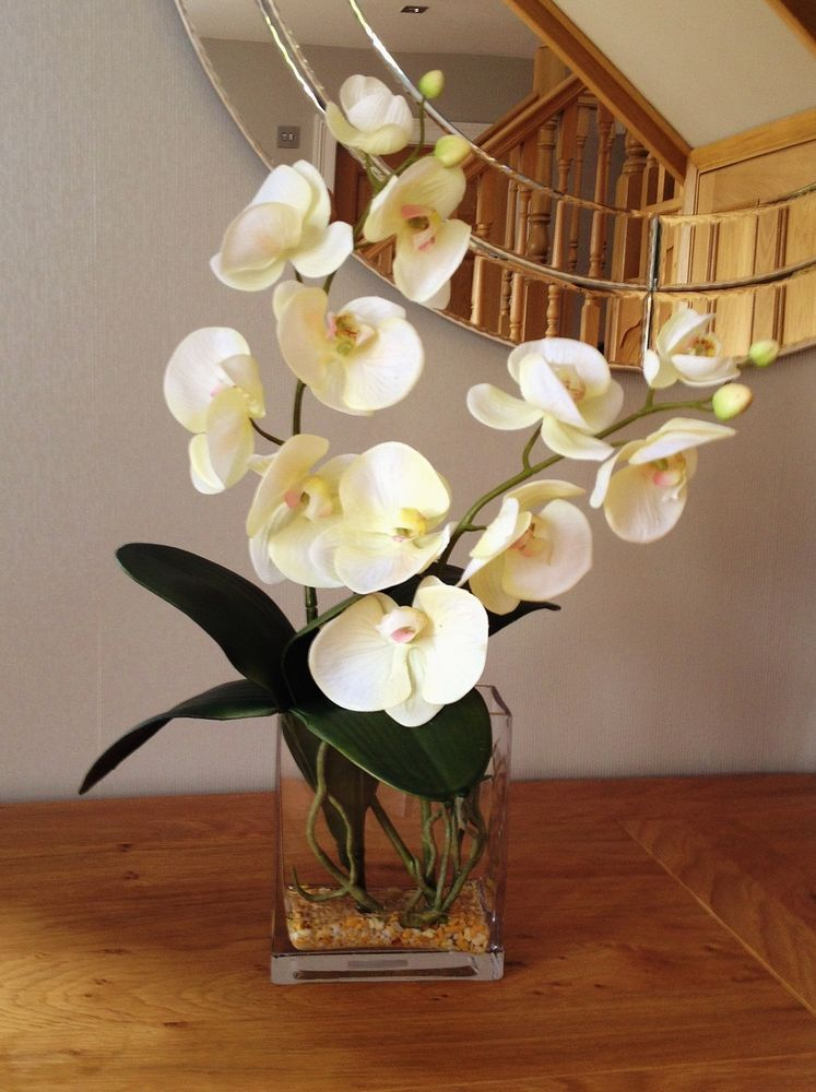 Trendy Gorgeous Artificial Cream Orchid Flower Arrangement In Glass Tank Vase 花艺 Orchid