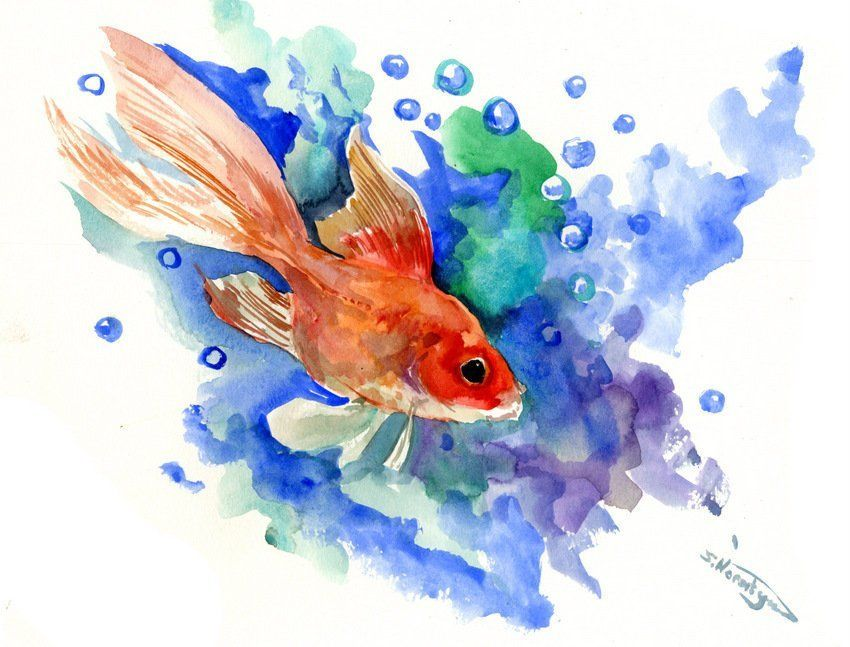 Goldfish Painting Aquarium Art Goldfish Illustration Nursery