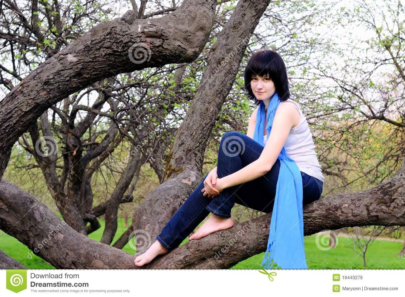 Girl Sitting In Apple Tree Attractive Girl Sitting On A Apple