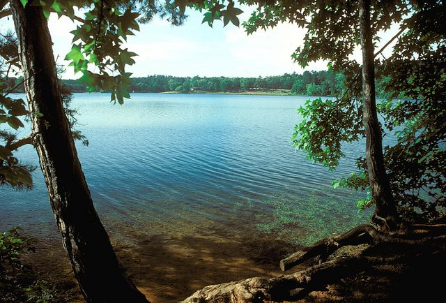 Tyler State Park Summer | Weekend getaways near me, State ...